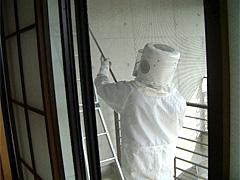 スズメバチの巣駆除中